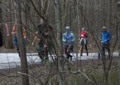 VIDEO! Osa Harku metsast võetakse kaitse alla