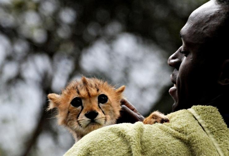 Tallinna õpilane sõidab esseekonkursi võidureisile Keeniasse