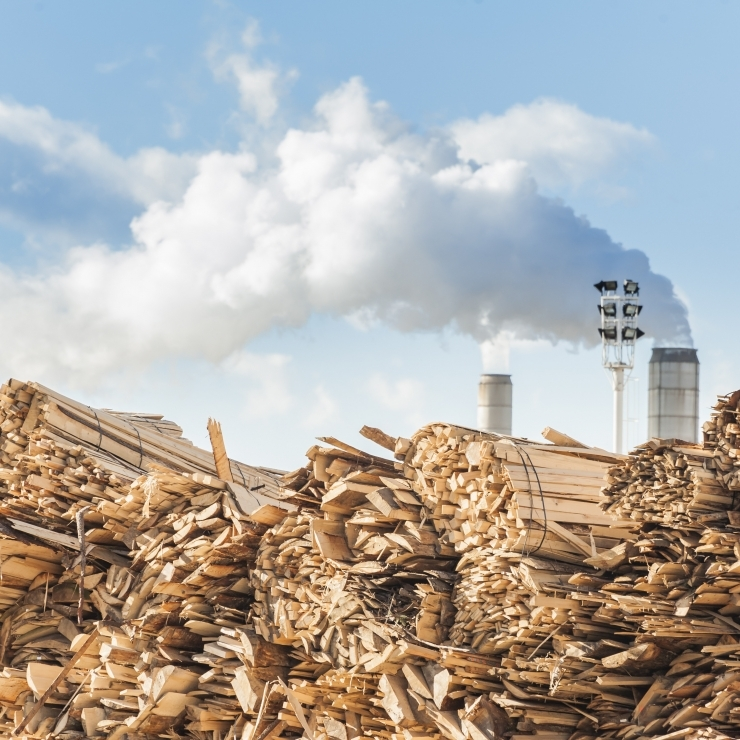 Ministeerium: miljarditehas survestaks teiste puidutööstuste kasumeid
