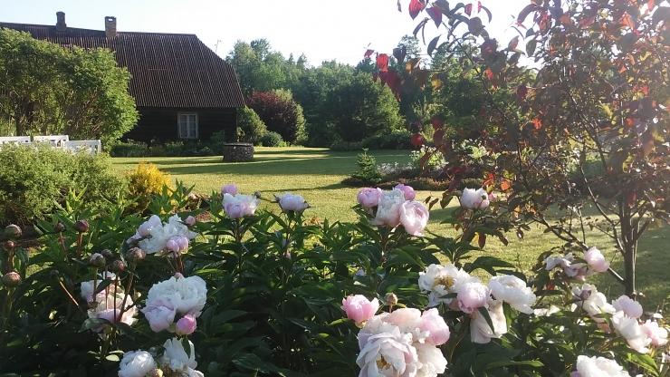 Juuni esimesel nädalavahetusel avavad Eesti aiad külastajatele oma väravad