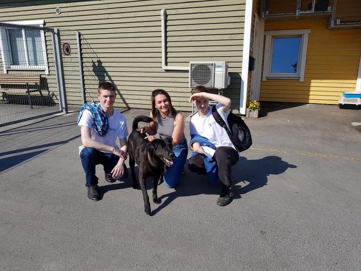 Põhja-Tallinna noored veetsid 100 tundi loomade varjupaigas