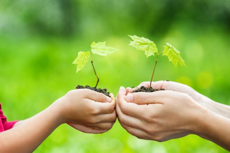 Koda: keskkond peab olema valimiste üks võtmeküsimusi