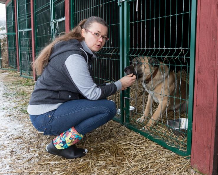 Loomakaitsjad: lemmiklooma hülgamise asemel otsige abi