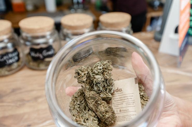 Ekspertiis tuvastas kõikides kontrollitud CBD-kanepipoodides THC piirmäära rikkumisi