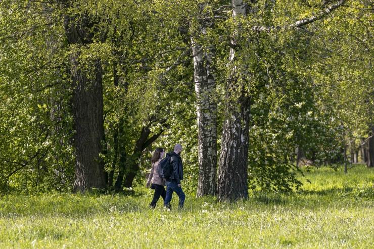 Pirital tähistatakse Läänemere päeva jalutuskäiguga