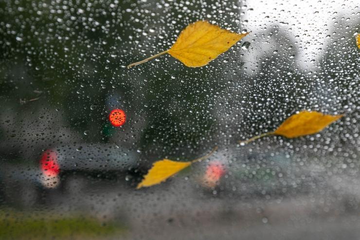 Esmaspäev toob tund-tunnilt tihenevat vihmasadu