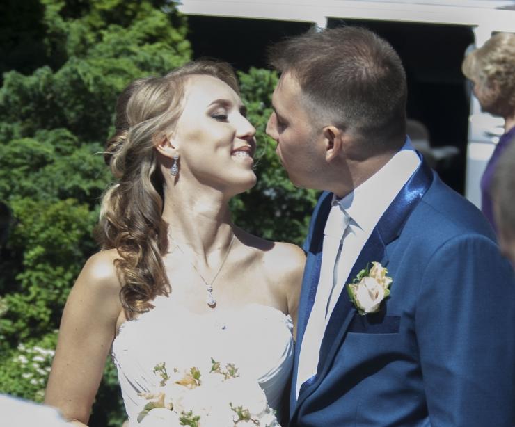 Abielureferendum viib  opositsioonilt hääli