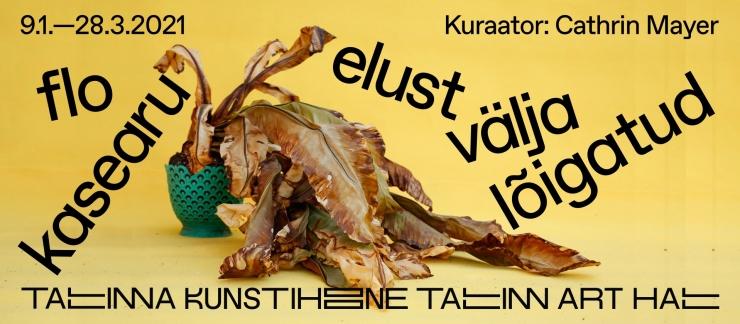 Tallinna Kunstihoones on tänasest avatud Flo Kasearu suurnäitus naistevastasest koduvägivallast