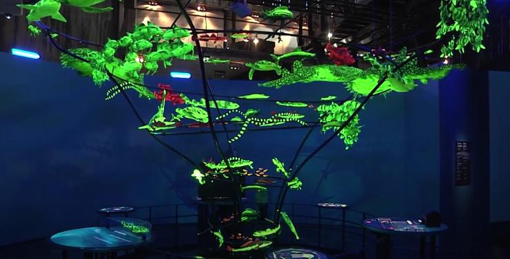 VIDEO! Lennusadam korraldab taas populaarse muuseumiöö